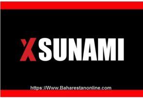 چرا خاطرات بازیگر فیلم های مستهجن در مشهد به صورت غیرقانونی اکران می شود ! + نامه مخالفت سازمان سینمایی