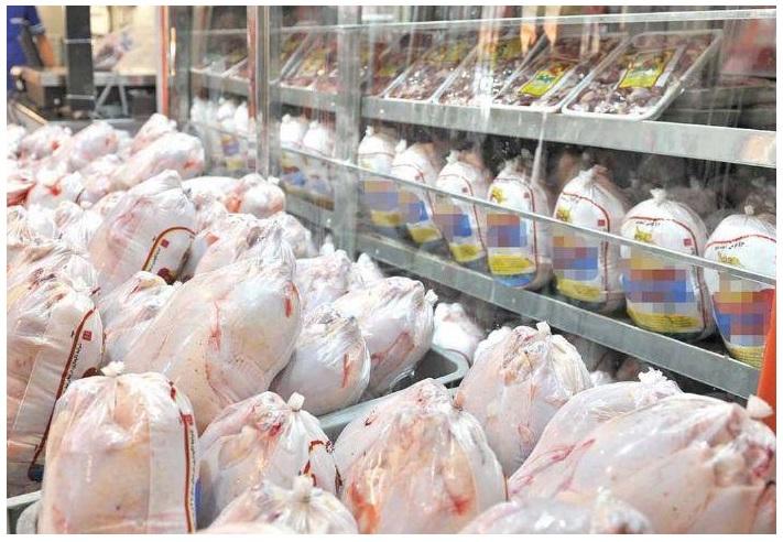 واردات مرغ تیر خلاصی به صنعت مرغداری کشور/کمبودی در عرضه مرغ شب عید نداریم
