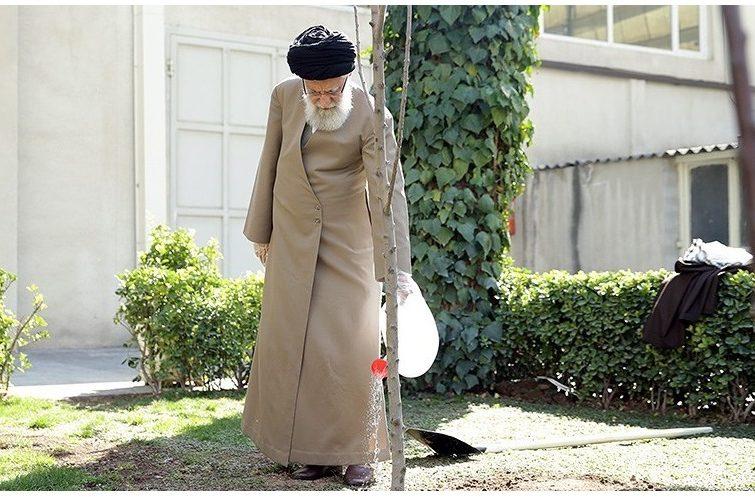 کاشت دو نهال توسط امام خامنه ای در هفته منابع طبیعی