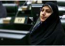 مجلس وقتی می تواند انگشت اتهام به سمت دولت بگیرد که اصلاح را از بدنه خود آغاز کند
