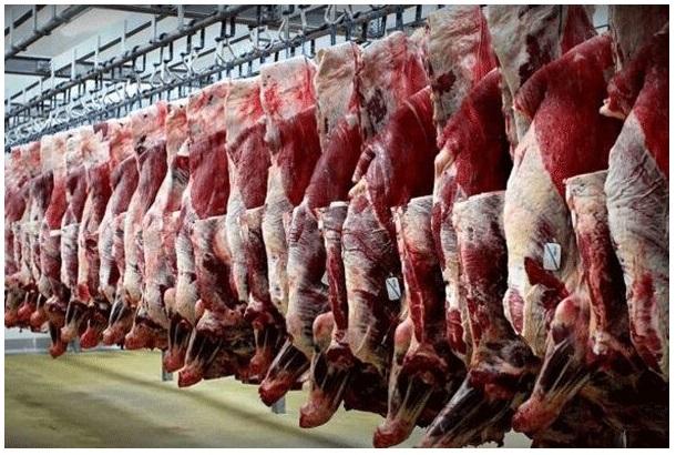 چگونه در عرض یکماه گوشت گوسفندی کیلویی ۱۷ هزار تومان گران شد ؟